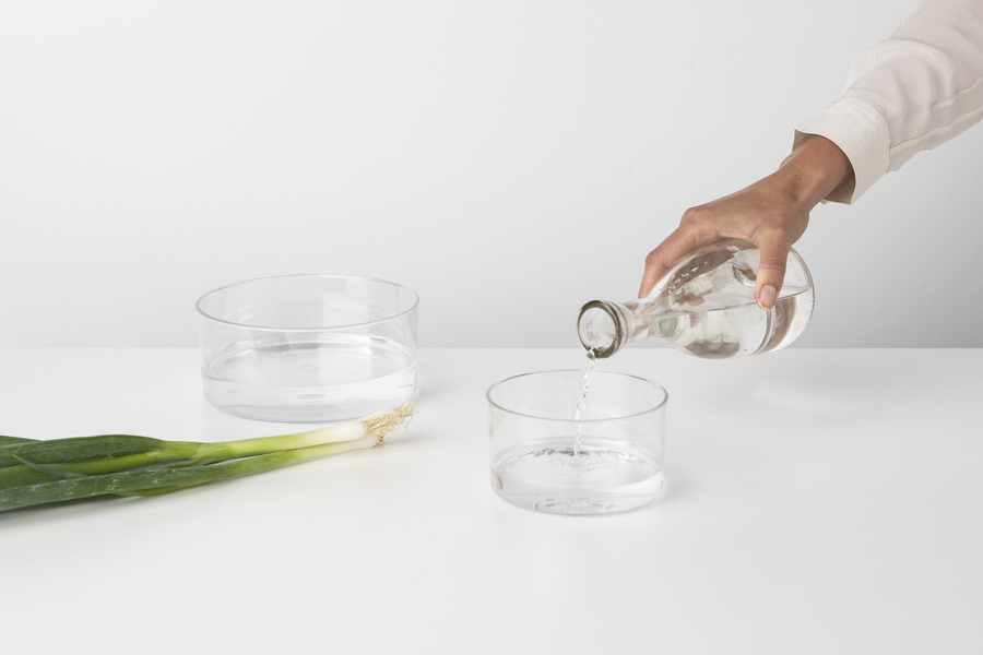 BRABANTIA-Tasty_Regrow-Kit 1